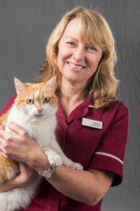 staff portrait of woman with a cat at veterinary hospital by freelance photographer John Kemp of JK Photography