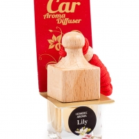 Scent diffuser for the car