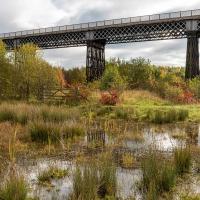 Bennerley Viaduct in autumn