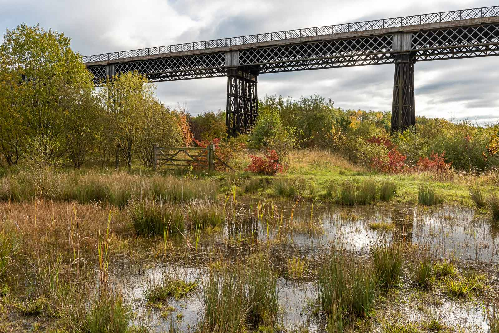 Bennerley Viaduct in autumn