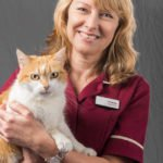 staff portrait with cat at veterinary hospital